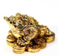 Жаба на монетах бронзаTS63